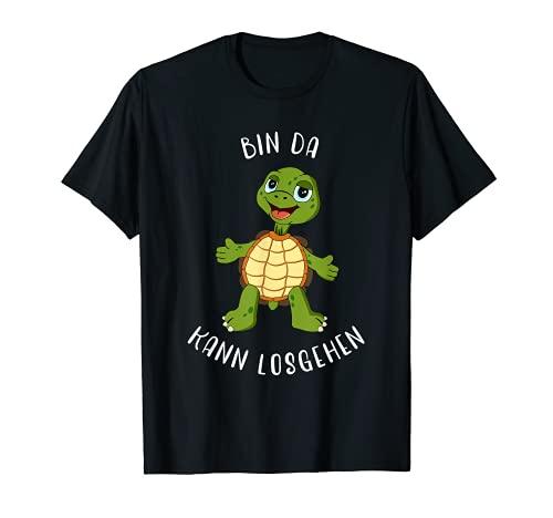 Schildkröte Bin da kann losgehen...