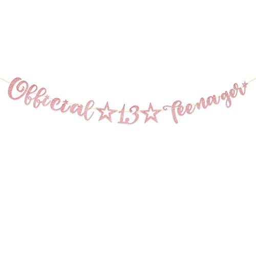 Official Teenager 13th Birthday Banner Anniversary Garlands Backdrop Bunting Thirteen Years Old Photo Booth Background DIY Party Decoration Supplies for Boys or Girls Living Room (Rose Gold)