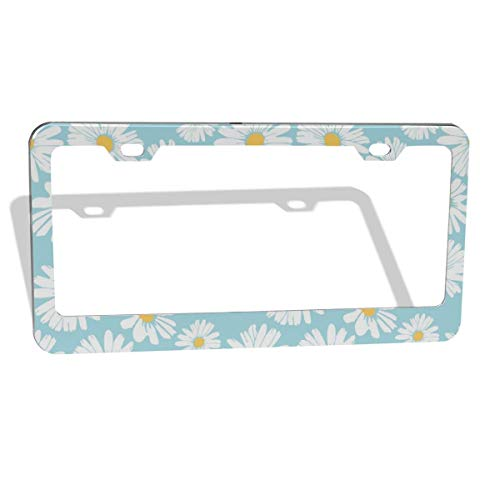 DGbanma License Plate Frame Stainless Steel Metal Car Tag Holder Auto Car for Us Standard 2 Hole,License Plate Frame for Women Daisy Flower