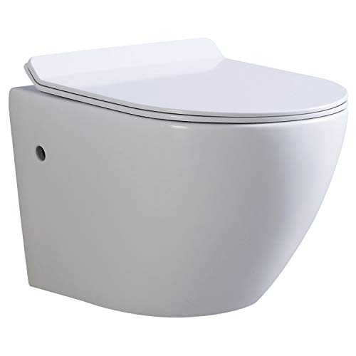 FRAO WC suspendu avec abattant à frein de chute