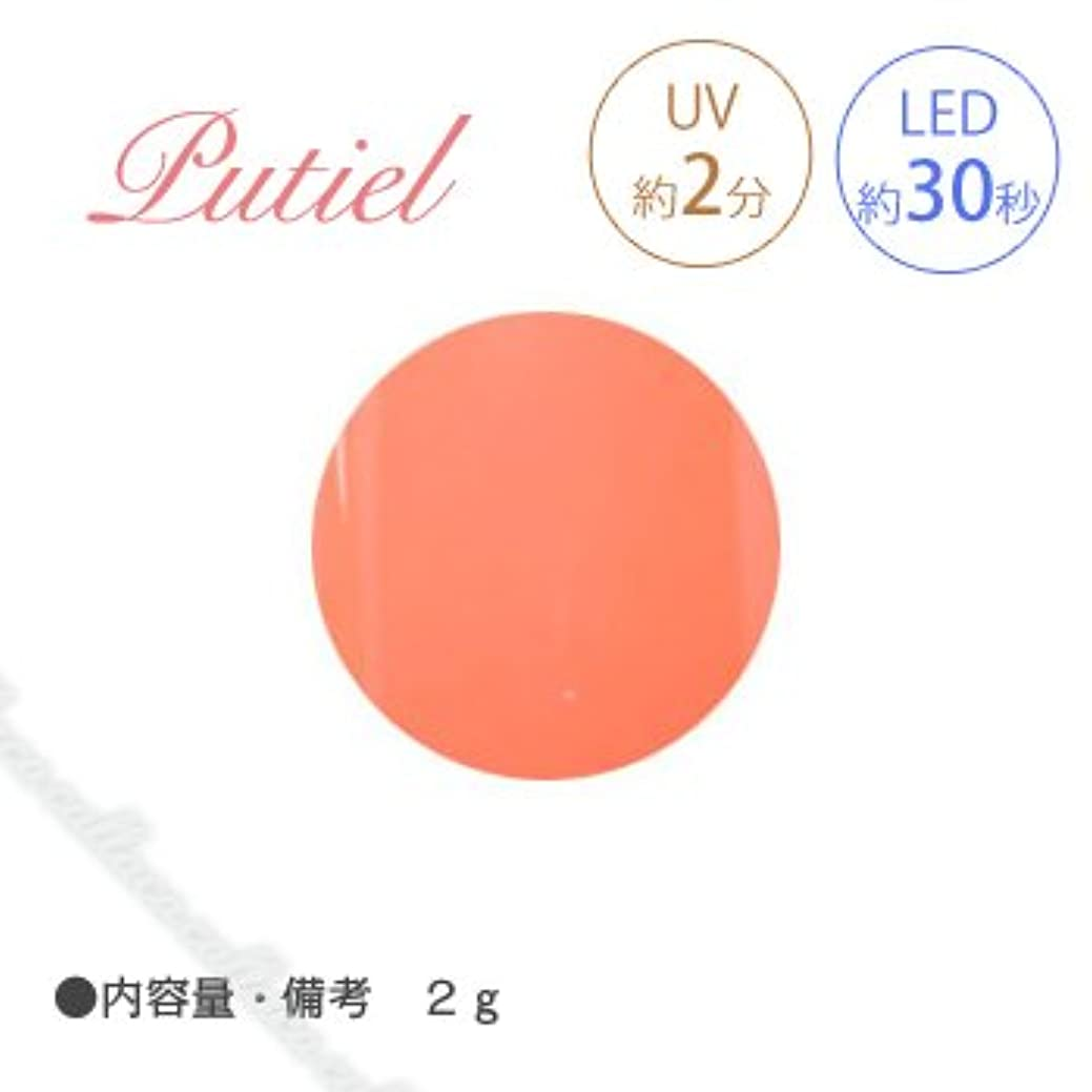 忌み嫌う木曜日保安Putiel プティール カラージェル 107 ビタミンオレンジ 2g