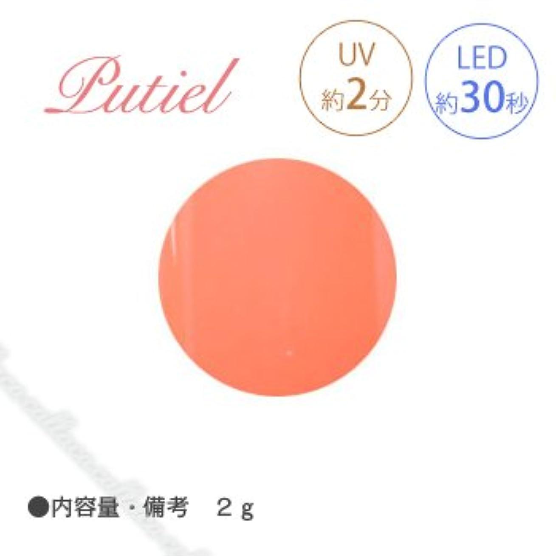 ホット属する昇進Putiel プティール カラージェル 107 ビタミンオレンジ 2g