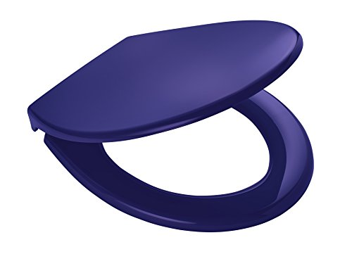 RIDDER Toilet Seat Miami, Blue, Polypropylène, Bleu, 44,7 x 37,2 x 4,9 cm