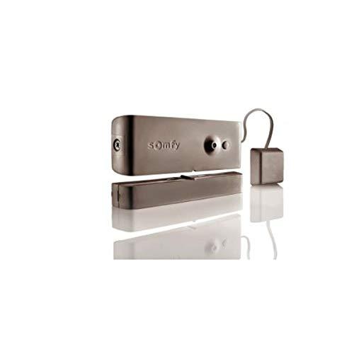 Somfy - Detector de apertura y rotura de cristal marrón para alarma PROTEXIOM y PROTEXIAL
