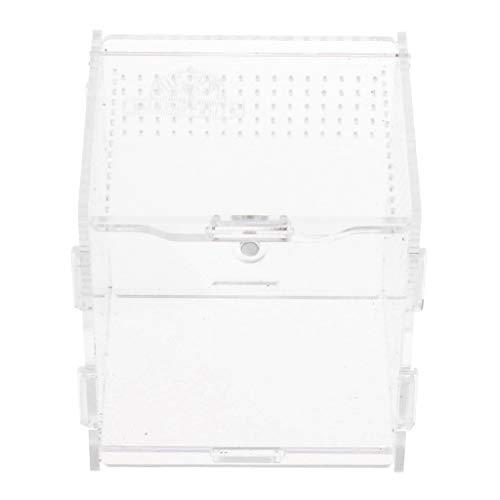SM SunniMix Acryl Terrarium Fütterungsbox für Reptilien, Spinnen, Schildkröten, Schlangen - Klar