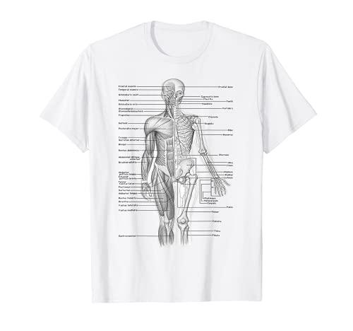 Menschlicher Muskel Anatomie Design TShirt Geschenkidee