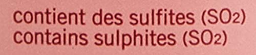 Ruinart Rosé Champagner ohne Geschenkverpackung (1 x 0.75 l) - 4