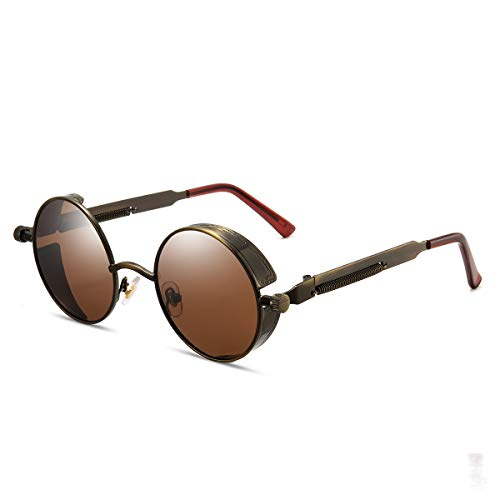 GY Polarized Steampunk Sunglasses, Metal Frame, Round Gothic Shades for Women Mens, UV400 Protection (Brown frame/Brown lens)