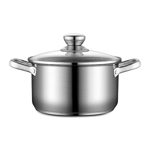 Lesgos Stainless Steel Stock Pot, 6 Qt Soup Pot with Tempered Glass Lid & Handle, Noodle Soup Pot, Universal Induction Cooker Pot for Kitchen Cooking
