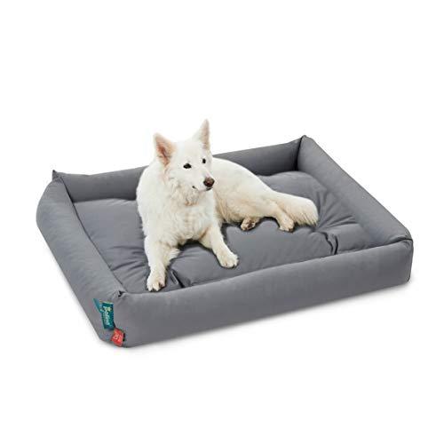 Palina® Hundebett mit Einlegekissen/Hundekissen (S-XXL, grau), 95 Grad waschbar, medizinische Sauberkeit, widerstandsfähig, kuschelig, orthopädisch, Öko-Tex Standard 100 (XL, Grau)