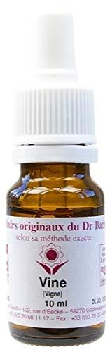 Elixir floral n 32 - vine