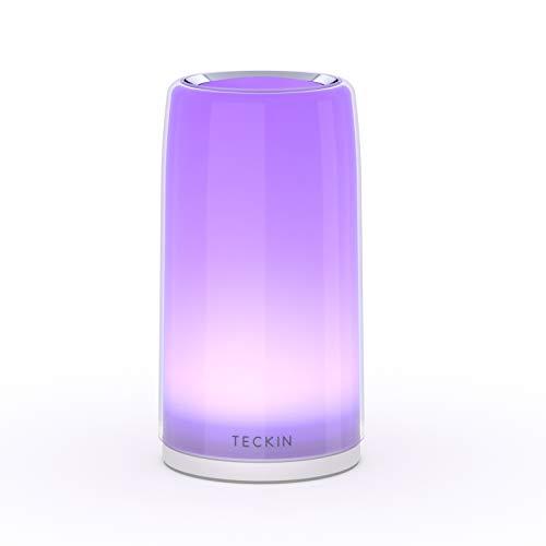 Nachttischlampe Touch dimmbar, TECKIN Tischlampe, LED-Tischlampe warmweißes Nachtlicht, Nachttischlampe für Schlafzimmer und Wohnzimmer, Geschenk für Frauen