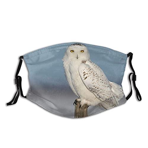 Máscara facial de moda cómoda con diseño de búho nevado plumas de pájaro a prueba de sol de moda Bandana Headwear para la pesca