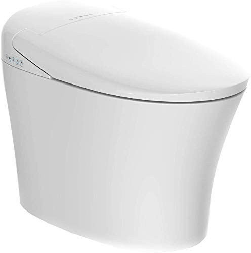 Mecor Electric Smart Toilet, Massage Washing, Auto Flush,Heated Seat with Integrated Multi Function Remote Control, With Advance Bidet And Soft Closing Seat,Smart Bidet(TA-858ZD)