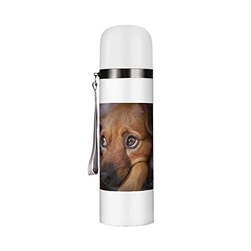 Stainless Steel Water Bottle with Cup 350ml, Vacuum Insulated Reusable Bottles, Portable Travel Mug with Leakproof Build-in Lid Cup for Adult, Kids (Pet dog)