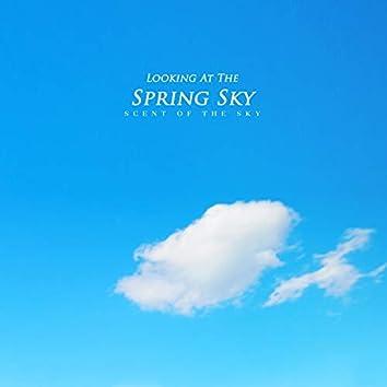 봄 하늘을 바라보며