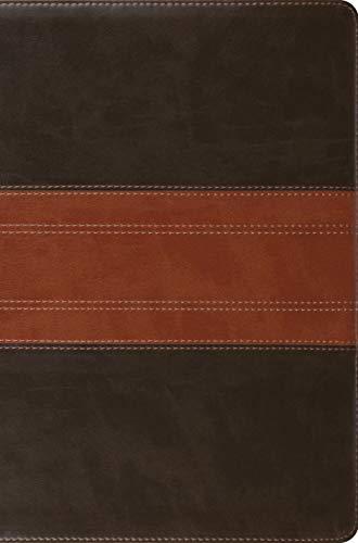 ESV Compact Bible (TruTone, Forest/Tan, Trail Design)