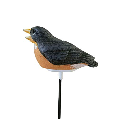 HWENJ Rilevatore di umidità di Resina Uccello pianta, igrometro Suolo rivelatore PH Canzone di Uccelli Ricorda Fiori e Piante rilevatore di umidità del Suolo del Giardino (Marrone)