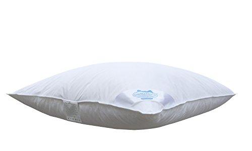 Wolkenkind PREMIUM Dreikammerkissen BARI 80 x 80cm weiß, 100% Naturprodukt, 1.100gr. Daunen & Federn, soft und stützend, Made in Germany