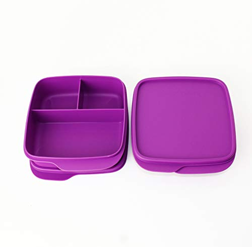 Pause TUPPERWARE to Go Lunchbox 2X 550ml Fuschia mit 3-Fach Einteilung