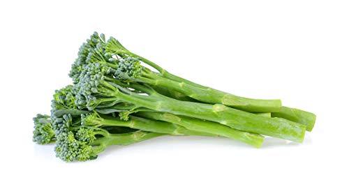 Fall Broccoli Raab Seeds - Rapini and Brassica Rapa VAR Ruvo Seeds