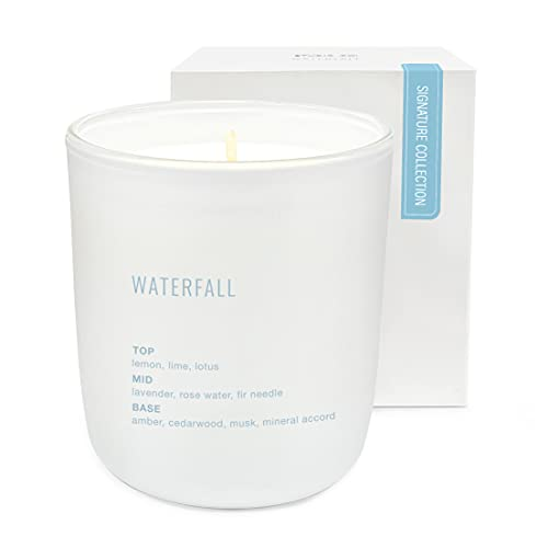 Scented Candle by Studio Oh! - 7.5-Ounce Signature Collection Fragrance-Infused Coconut-Soy Blend Wax Jar Candle - Waterfall - Burns up to 40 Hours