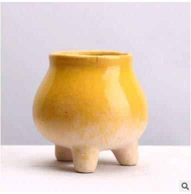 Yi Xuan Planta carnosa Olla de cerámica Tiesto suculento de la decoración del hogar en Maceta Tiesto Flor Planta carnosa (Color : G)