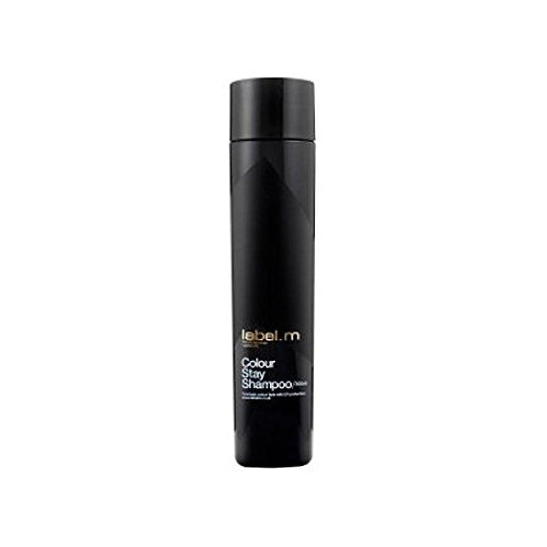 額ラメ観客Label.M Colour Stay Shampoo (300ml) - .カラーステイシャンプー(300ミリリットル) [並行輸入品]