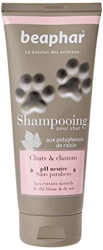 beaphar Premium Shampoo für Katzen und Kätzchen, 200 ml