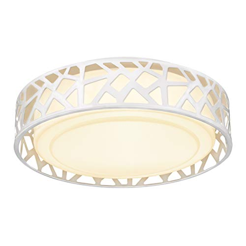 Flush Mount Light Fixture, VICNIE 12 inch 15W 1100 Lumens LED Ceiling Lights, Dimmable 3000K Warm White, ETL Listed for Kitchen, Hallway, Bedroom, Stairways (Metal Body and Acrylic Shade)