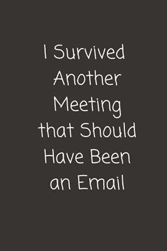 I Survived Another Meeting that Should Have Been an Email: Funny Gift For Co-workers, Friends, and Family | 6x9 lined Notebook, 120