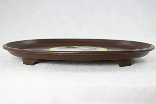Oval Japanese Deluxe Plastic Humidity Tray for Bonsai Tree 11.5'x 8.5'x 1.25'