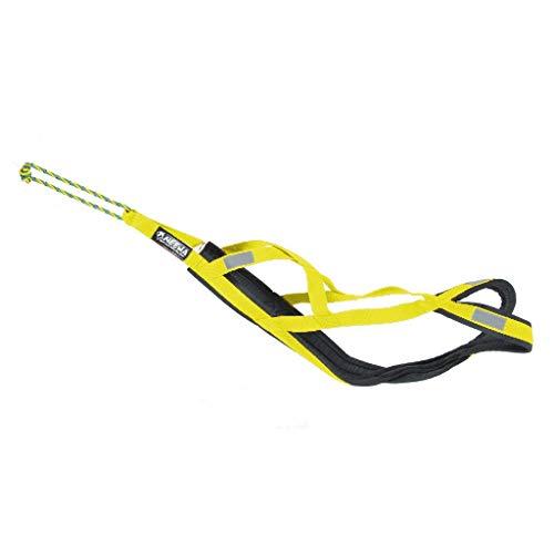Neewa 8033087538946–Sled Pro Gurt gelb Large