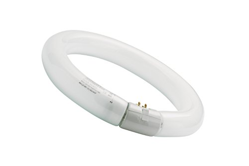 Sylvania 0001965 - Tubo fluorescente circular 32W/865 Tr