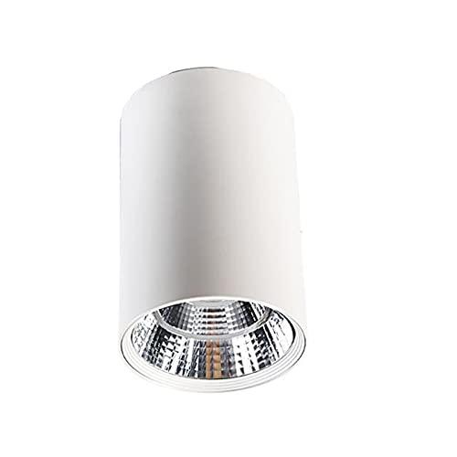ALGXYQ Cilíndrico LED Luz Concentrada AC110V-220V Araña de Salón el Ahorro de Energía Fácil de Instalar Dormitorio, Pasillo, Comedor, Oficina Color : White (White Light), Size : 20W