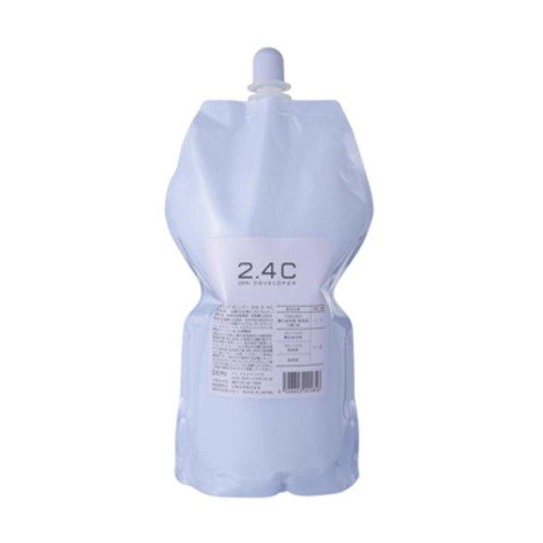 視力取るホールドデミ ディベロッパー オキシ 2.4%(2剤)