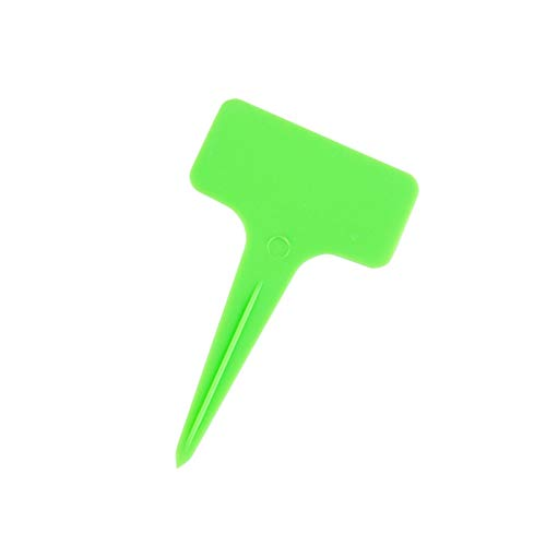 ZZDH Plant Labels Markers 50 Pcs Garden Ornaments 6 Colors T Type Plastic Mark Plant Tag Reusable Gardening Vegetable Potted Nursery Labels (Color : Green)