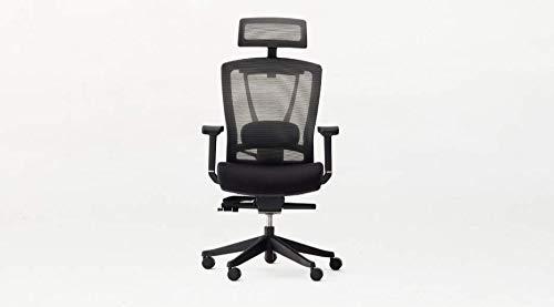 Autonomous Ergo Chair 2 - Premium Ergonomic Office Chair - 7-Way Adjustable Angle Chair (All Black)