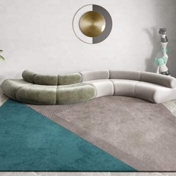 ZXT-DT Free shipping Area Rug New sales Modern Rugs Fluffy Traditional Ru Rectangle