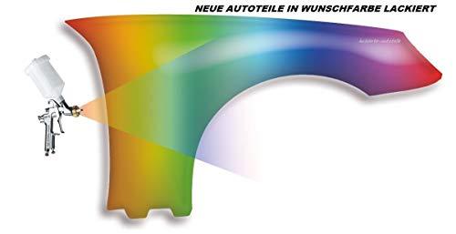 Vorderer Kotflügel mit Blinkerloch lackiert in Wunschfarbe Kompatibel für VW Passat 3BG 2000-2003