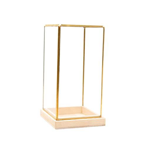 Vitrina de cristal con hendidura Vitrina decorativa a prueba de polvo con marcos de latón, cerradura, caja de presentación para plantas de terrario coleccionables antiguas - S