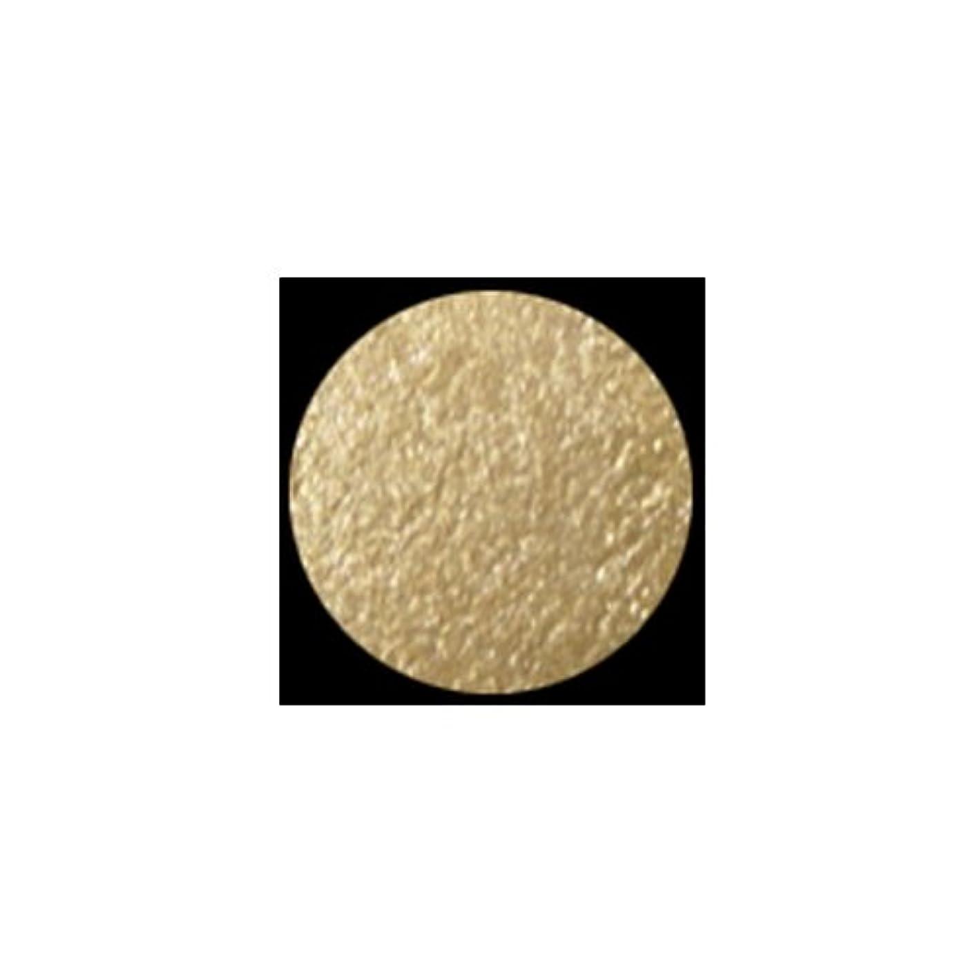 非武装化心配するかみそり(3 Pack) KLEANCOLOR American Eyedol (Wet/Dry Baked Eyeshadow) - Champagne (並行輸入品)