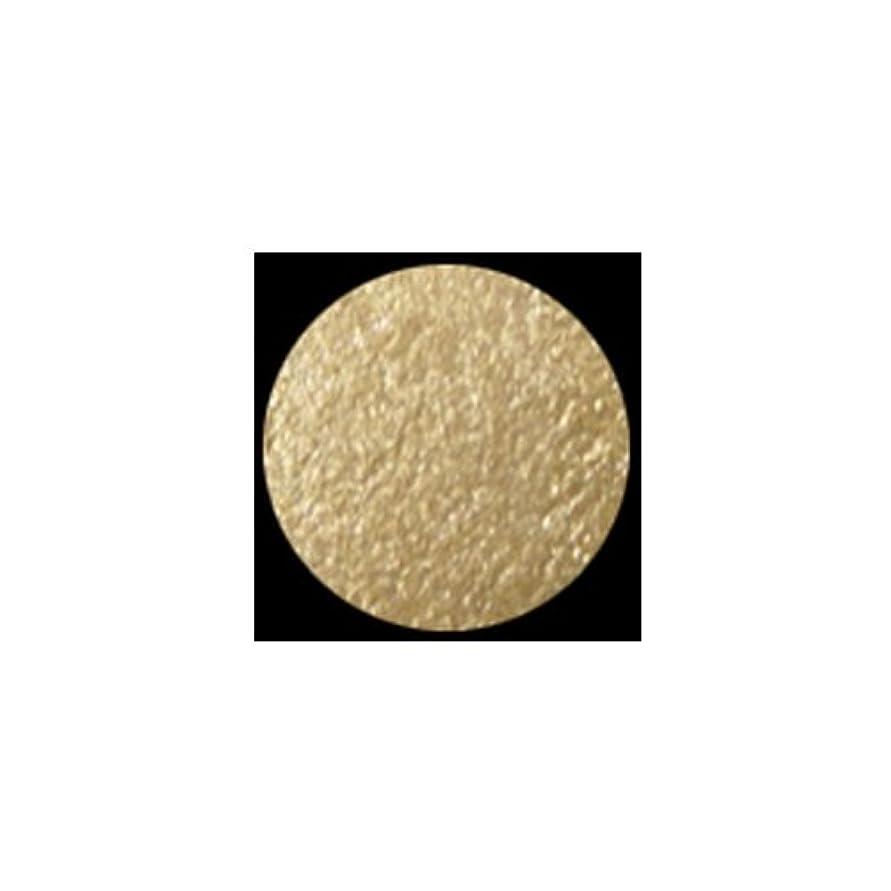 帰する不誠実美容師(3 Pack) KLEANCOLOR American Eyedol (Wet/Dry Baked Eyeshadow) - Champagne (並行輸入品)