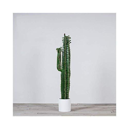Las plantas en maceta de simulación a gran escala, for suelo de...