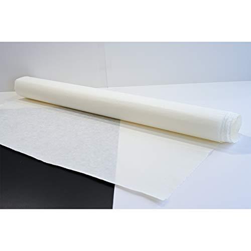 [10 Stück] Koreanisch Traditionelle Mulberry Papier Hanji handgefertigt Plain Natürliche weiß 28.3