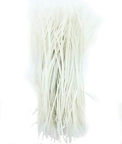 5''-9.5'' Feathers Fly Tying Materials for stonefly Nymph Split Tails& Down Wings 50pcs/Pack (White)
