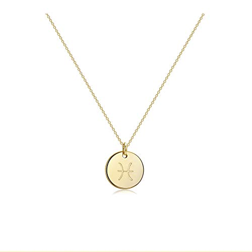 Befettly Constellation Necklace Pendant 14K Gold-Plated Hammered Round Disc Engraved Star Sign Pendant 17.5'' Adjustable Dainty Necklace NK-Pisces