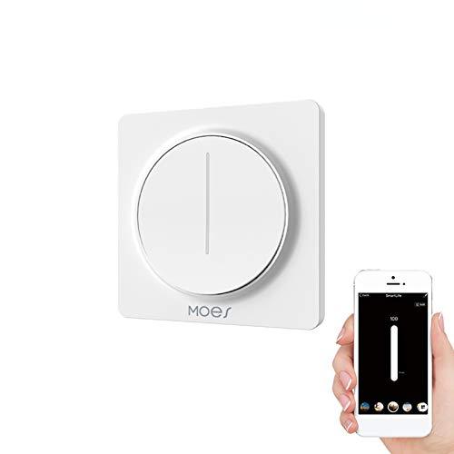 WiFi Dimmer Lichtschalter, Smart Touch Wall WiFi Dimmer, APP und Sprachsteuerung, kompatibel mit Alexa/Google Home, Smart Life/Tuya