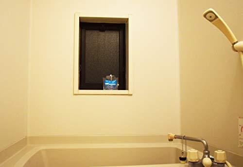 ビッグバイオ ちょこっと置いて吊るして防カビ 浴室用 150g