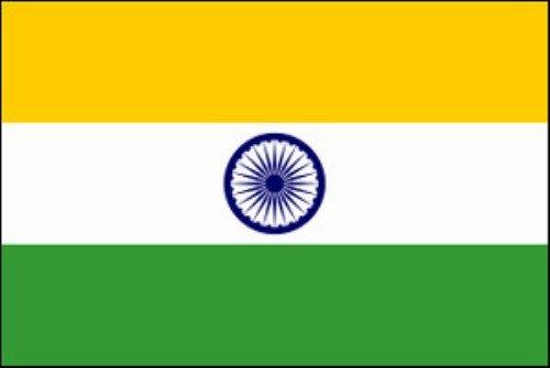 Flag Bunting (8 pieds, le papier de qualité) - Inde [Jouet]